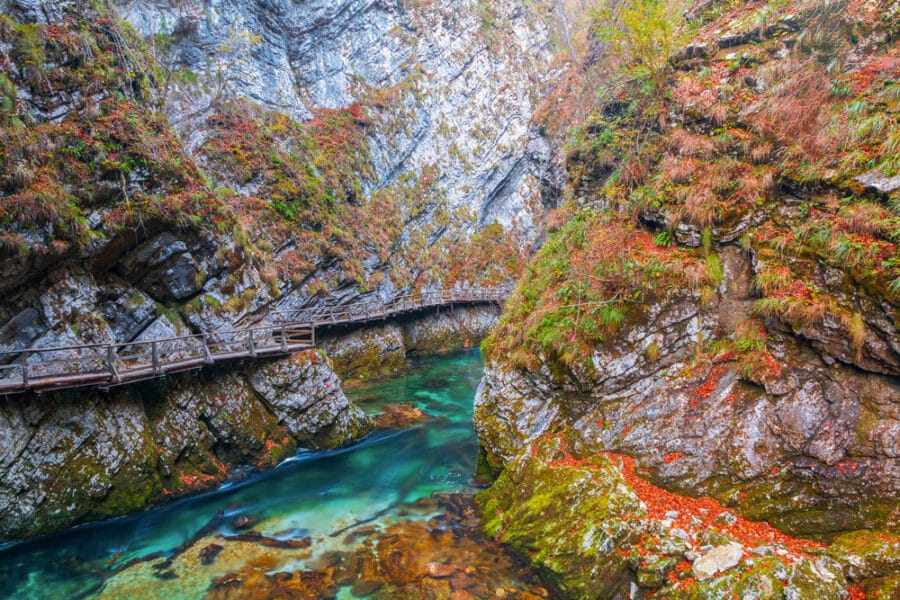 Triglav National Park - Famous and beloved Vintgar Gorge canyon