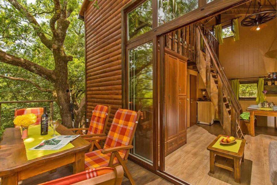 Weird accommodation in Croatia - Treehouse