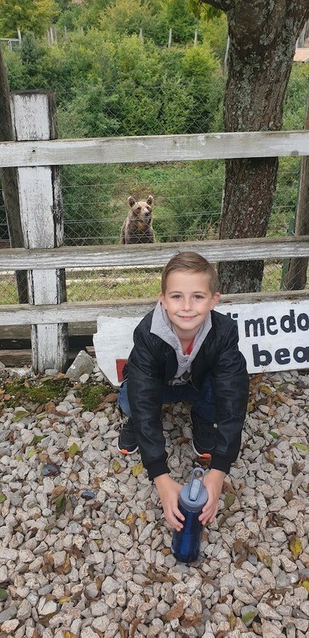 What to do in Croatia with kids and families - Bear Vladimir