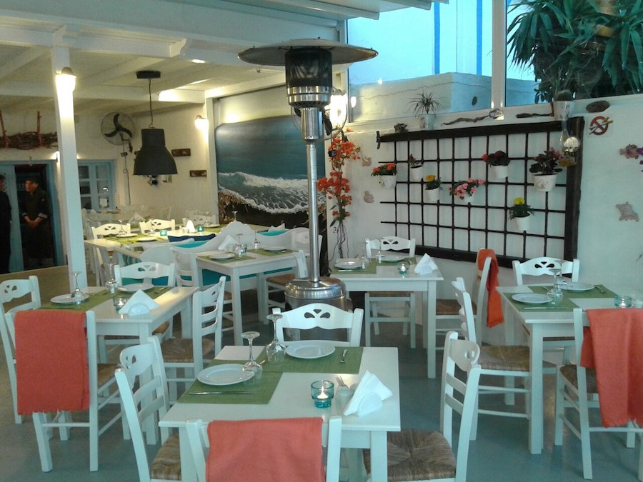 Greece Travel Blog_Things To Do In Santorini With Kids_Avocado