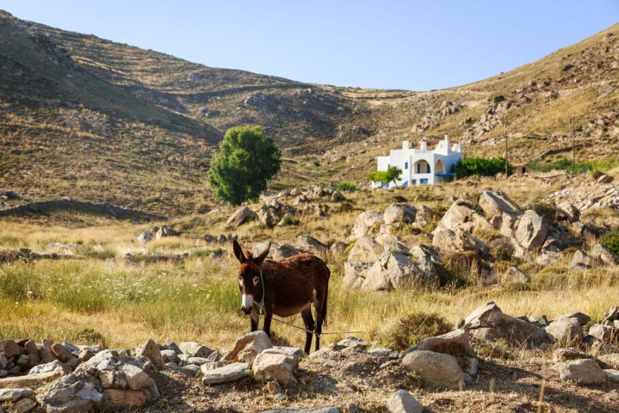 CycladesIslandHopping - Paros Island