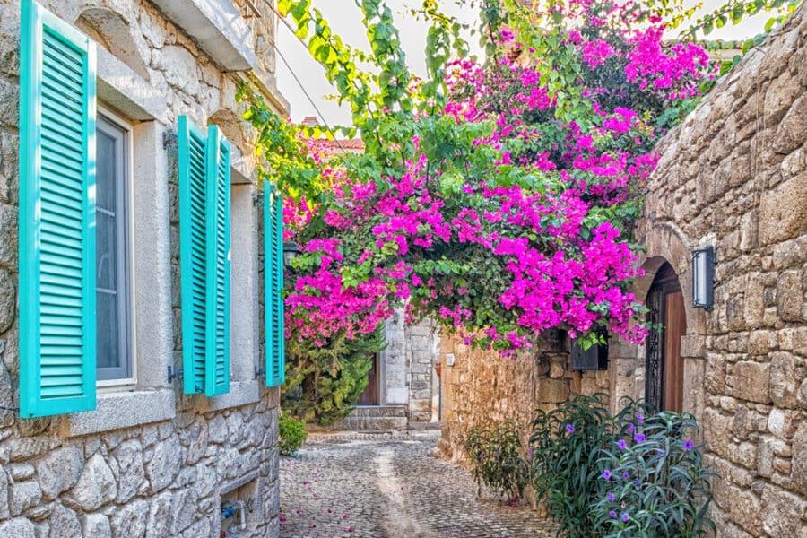 Turkey Hidden Gems - Blue shutters on a house and purple bougainvillea in a narrow street in Alacati,Izmir, Turkey