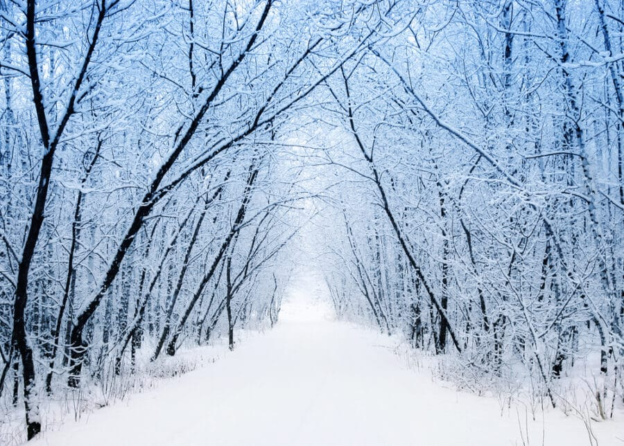 Snow time in winter