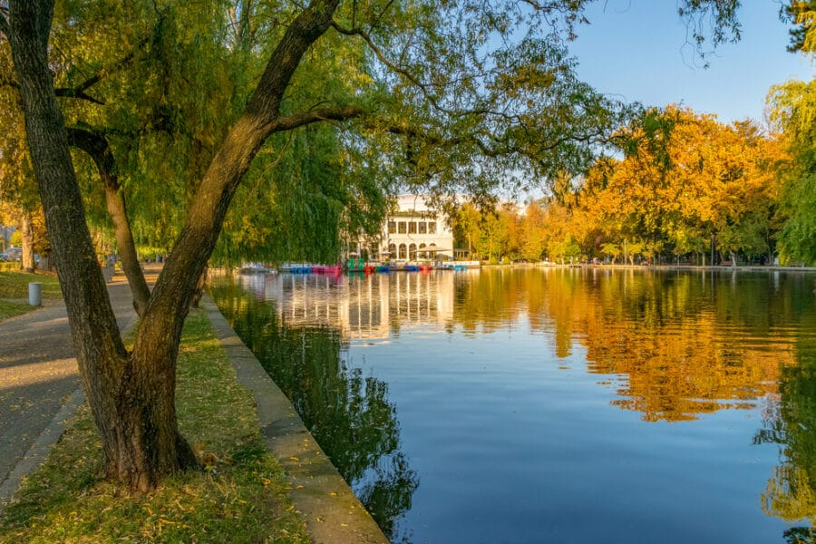 Chios Lake in the Cluj-Napoca Central Park