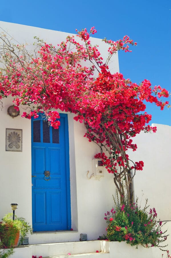 Traditional greek door on Sifnos island close to Athens